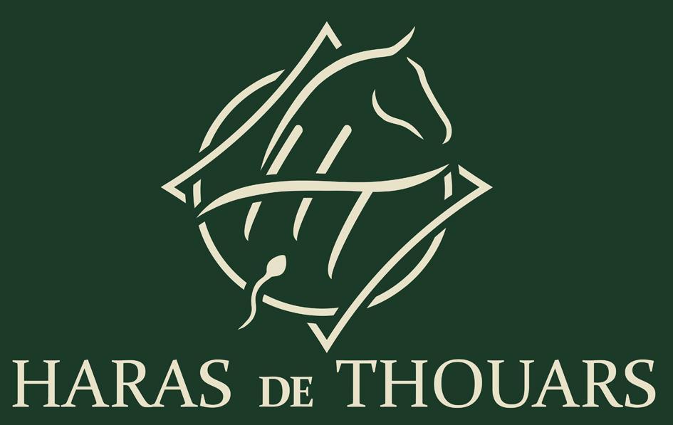 Logo ht couleur
